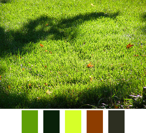 Green Grass Color Scheme