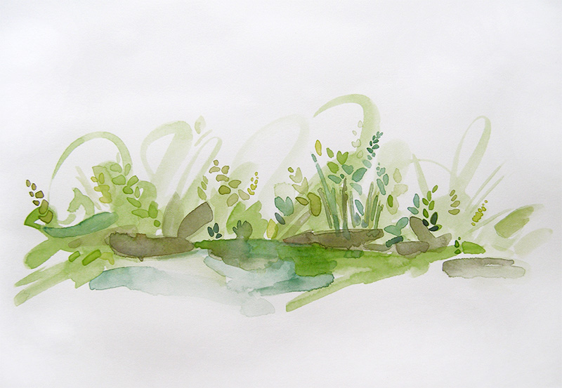 Watercolor Grasses and Leaves by Cortney North Fine Art